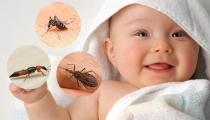 Chỉ cần tắm thôi cũng giúp bé xua đuổi hết muỗi và côn trùng, mẹ có tin không?