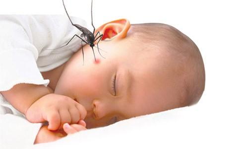 Viêm não Nhật Bản là một bệnh nhiễm trùng cấp tính thường gặp ở trẻ nhỏ.